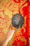 Θηλυκό χέρι που τραβά τα επικεφαλής ρόπτρα πορτών λιονταριών ορείχαλκου στο χρωματισμένο ξύλο Στοκ Φωτογραφίες