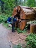 Θηλυκό Backpacker που παίρνει μια φωτογραφία Στοκ φωτογραφίες με δικαίωμα ελεύθερης χρήσης