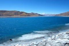 Θιβετιανή λανθασμένη λίμνη ZhuoYong προβάτων, στοκ εικόνες