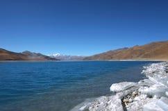 Θιβετιανή λανθασμένη λίμνη ZhuoYong προβάτων, στοκ φωτογραφία με δικαίωμα ελεύθερης χρήσης