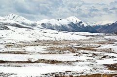 Θιβετιανή σκηνή οροπέδιων Στοκ Εικόνες