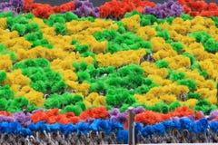 $θμαλαισιανοί στον πρόσφατο μαλαισιανό εορτασμό ημέρας της ανεξαρτησίας Στοκ Φωτογραφία