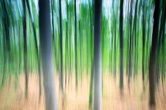 Θολωμένα δέντρα Στοκ Φωτογραφίες