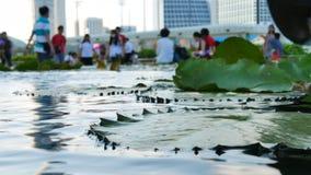Θολωμένοι άνθρωποι και λίμνη νερό-κρίνων στο πρώτο πλάνο στη Σιγκαπούρη φιλμ μικρού μήκους