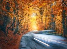 Θολωμένος δρόμος βουνών αυτοκινήτων πηγαίνοντας στο δάσος φθινοπώρου στο ηλιοβασίλεμα Στοκ φωτογραφίες με δικαίωμα ελεύθερης χρήσης