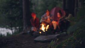 Θολωμένο μήκος σε πόδηα των ταξιδιωτικών ρομαντικών νέων που κάθονται κοντά στην πυρά προσκόπων στο δάσος, το παιχνίδι της κιθάρα απόθεμα βίντεο