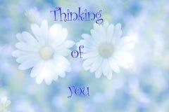 Θολωμένα λουλούδια μαργαριτών στο φυσικό υπόβαθρο με τη σκέψη κειμένων σας Στοκ Εικόνα