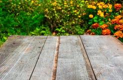 Θολωμένος κήπος φθινοπώρου με το υπόβαθρο λουλουδιών και το ξύλινο γραφείο Στοκ εικόνα με δικαίωμα ελεύθερης χρήσης