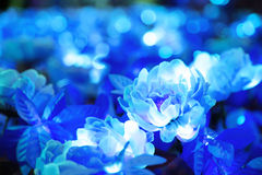 Θολωμένος του μπλε λουλουδιού με φωτισμό των στρογγυλών φωτισμένο το μορφή οδηγήσεων Στοκ φωτογραφία με δικαίωμα ελεύθερης χρήσης