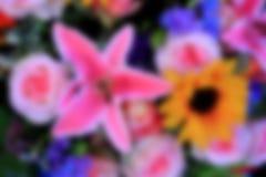 Θολωμένο υπόβαθρο ανθοδεσμών λουλουδιών εικόνας στοκ φωτογραφίες