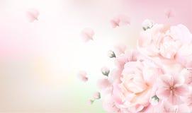 Θολωμένο υπόβαθρο κρητιδογραφιών με τα πέταλα λουλουδιών Στοκ Εικόνα
