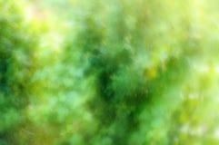 Θολωμένο υπόβαθρο της φύσης Στοκ εικόνα με δικαίωμα ελεύθερης χρήσης