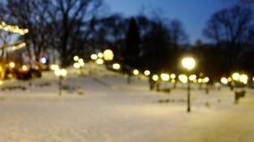Θολωμένο υπόβαθρο του πάρκου το χειμώνα στοκ εικόνες