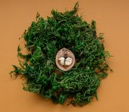 Θρυμματισμένο ξύλο καρυδιάς με τον καρδιά-διαμορφωμένο πυρήνα Στοκ Εικόνες