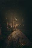 Θρυλικό ξίφος Excalibur Στοκ φωτογραφίες με δικαίωμα ελεύθερης χρήσης