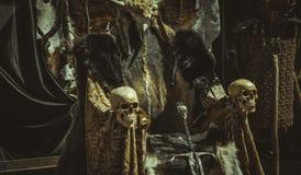 Θρόνος των γουνών και των κρανίων με ένα ξίφος Βίκινγκ Έδρα με το ζώο Στοκ εικόνα με δικαίωμα ελεύθερης χρήσης