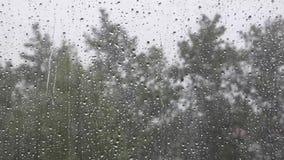 Θυελλώδης ημέρα, γυαλί με τα waterdrops και τα θολωμένα δέντρα πίσω απόθεμα βίντεο