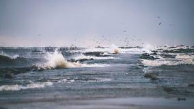 Θυελλώδης θάλασσα το χειμώνα με τα άσπρα κύματα που συντρίβουν - εκλεκτής ποιότητας ταινία lo Στοκ Εικόνα