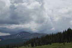 Θυελλώδη σύννεφα που κυλούν πέρα από τα δέντρα πεύκων Στοκ εικόνα με δικαίωμα ελεύθερης χρήσης