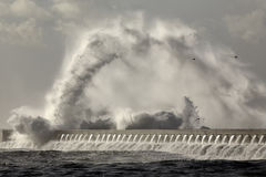 Θυελλώδεις παφλασμός και ψεκασμός κυμάτων θάλασσας Στοκ Εικόνες