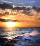 Θυελλώδης θάλασσα με το ηλιοβασίλεμα και τα πουλιά/τον όμορφο καιρό Στοκ Εικόνα