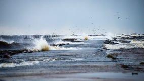 Θυελλώδης θάλασσα το χειμώνα με την άσπρη συντριβή κυμάτων Στοκ Εικόνα