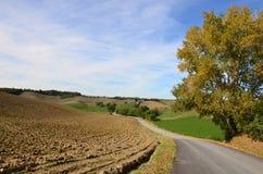 Θυελλώδης δρόμος μέσω της Tuscan επαρχίας Στοκ φωτογραφίες με δικαίωμα ελεύθερης χρήσης