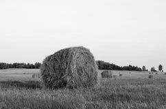 Θυμωνιά χόρτου ενάντια στον ουρανό Χρόνος κοπής χόρτου Στοκ φωτογραφίες με δικαίωμα ελεύθερης χρήσης