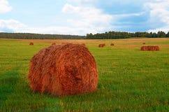 Θυμωνιά χόρτου ενάντια στον ουρανό Χρόνος κοπής χόρτου Στοκ εικόνα με δικαίωμα ελεύθερης χρήσης