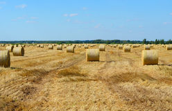 Θυμωνιά χόρτου ενάντια στον ουρανό Χρόνος κοπής χόρτου Στοκ Εικόνες