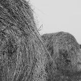 Θυμωνιά χόρτου ενάντια στον ουρανό Χρόνος κοπής χόρτου Στοκ Εικόνα