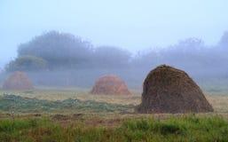 Θυμωνιά χόρτου στην ομίχλη πρωινού τομέων, πράσινο θερινό πρωί χλόης στην επαρχία Στοκ εικόνες με δικαίωμα ελεύθερης χρήσης