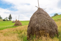 Θυμωνιά χόρτου στο λιβάδι στα Καρπάθια βουνά Στοκ εικόνα με δικαίωμα ελεύθερης χρήσης