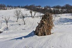 Θυμωνιά χόρτου των cornstalks 2 Στοκ φωτογραφία με δικαίωμα ελεύθερης χρήσης