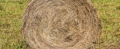 Θυμωνιά χόρτου Cicular Στοκ εικόνες με δικαίωμα ελεύθερης χρήσης