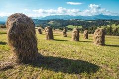 Θυμωνιές χόρτου σε Tatra Στοκ Εικόνες