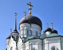 Θόλοι Annunciation του καθεδρικού ναού στη λεωφόρο επαναστάσεων σε Voronezh, Ρωσία στοκ φωτογραφίες με δικαίωμα ελεύθερης χρήσης