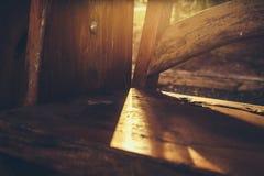 Θόρυβος και σιτάρια, φως και ξύλινος πάγκος σκιών στο πάρκο στοκ φωτογραφία με δικαίωμα ελεύθερης χρήσης