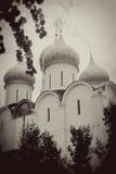 Θόλοι εκκλησιών που βλέπουν μέσω των κορμών δέντρων Φωτογραφία σεπιών στοκ εικόνες