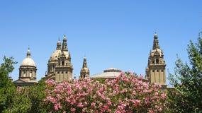 Θόλοι του εθνικού παλατιού Catalunya στοκ φωτογραφίες με δικαίωμα ελεύθερης χρήσης