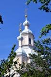 Θόλοι του καθεδρικού ναού Αγίου Andrew στοκ εικόνες