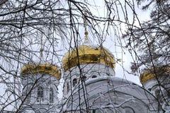 Θόλοι του μοναστηριού Raifa Bogorodsky κοντά Kazan, Ρωσία στοκ εικόνα