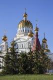 Θόλοι Fedora Ushakova καθεδρικών ναών στοκ εικόνα με δικαίωμα ελεύθερης χρήσης