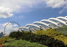 Θόλος λουλουδιών με το ιπτάμενο της Σιγκαπούρης Στοκ Εικόνες