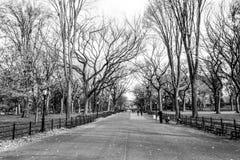 Θόλος των αμερικανικών λευκών στο Central Park στοκ φωτογραφίες με δικαίωμα ελεύθερης χρήσης
