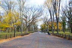 Θόλος των αμερικανικών λευκών στο Central Park στοκ φωτογραφία