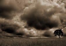 θύελλα 4 Στοκ Φωτογραφίες