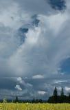Θύελλα άνοιξη Στοκ εικόνα με δικαίωμα ελεύθερης χρήσης