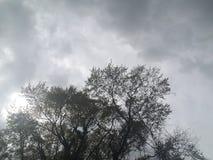 Θύελλα βροχής άνοιξη που κυλά μέσα Στοκ Φωτογραφία