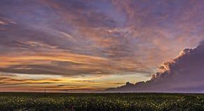 Θύελλα ηλιοβασιλέματος στοκ εικόνα με δικαίωμα ελεύθερης χρήσης